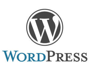 Some Fundamental Tips For WordPress Novice