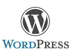 seoramanarora-wordpress-cms